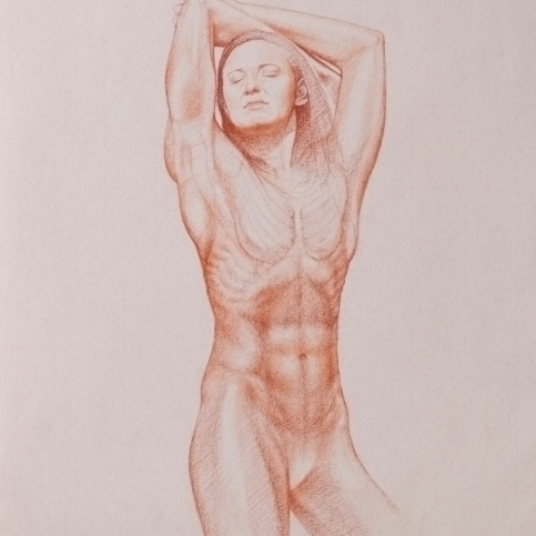 Cate Campbell | 2018 | sanguine chalk on Ingres buff paper | 41cm x 29cm